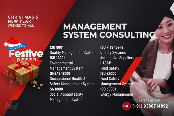 Management System Consulting Courses