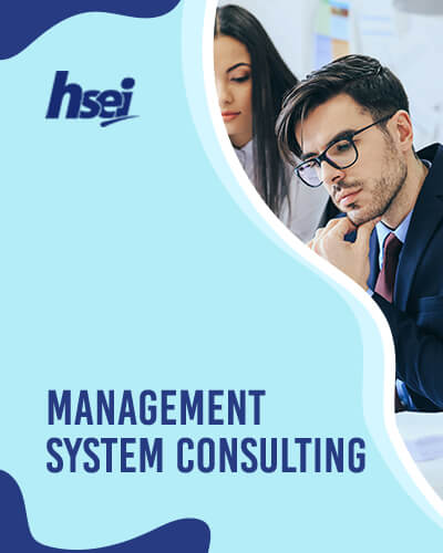 Management System Consulting - ISO Certified, Quality Management System, OHSMS, Social Accountability Management System, Food Safety